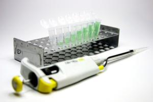 Panier de laboratoire