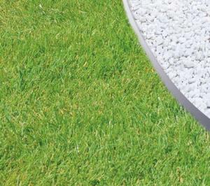 bordures de jardin acier galvanisé