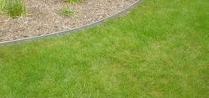 Bordure de pelouse en acier galvanisé